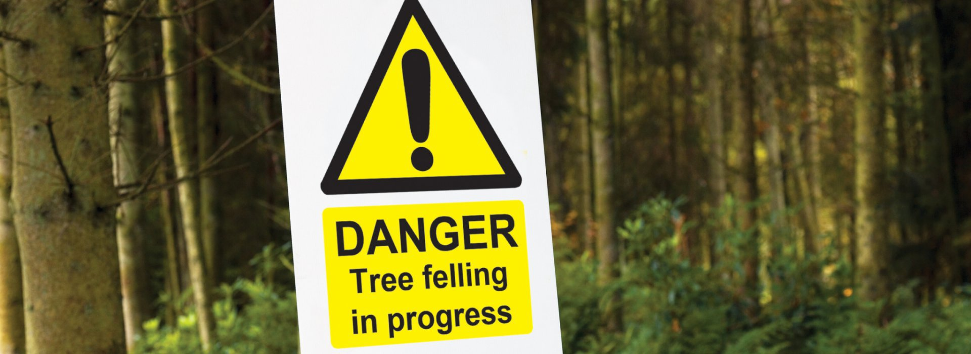 Logging Safety Signs